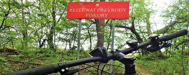 Rowerem do Rezerwatu Przyrody Piskory przez Gołąb i Niebrzegów