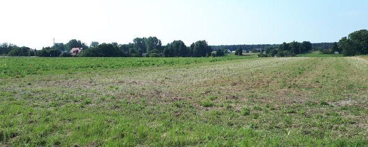 Przetarg ustny nieograniczony na sprzedaż prawa własności niezabudowanej nieruchomości położonej w Żyrzynie