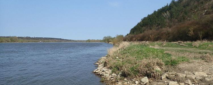 Rzeka Wisła