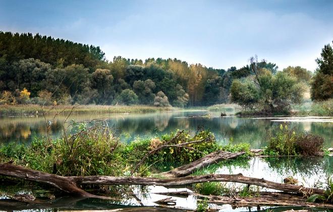 Sytuacja hydrologiczna na rzekach Powiatu Ryckiego