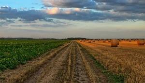Powiatowy Zespół doradztwa Rolniczego w Łęcznej serdecznie zapraszana na szkolenie