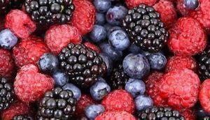 Informacja dla plantatorów i punktów skupy owoców i warzyw