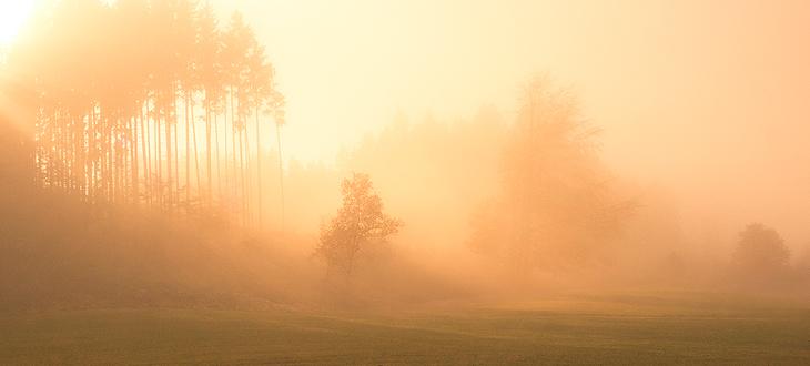 Ostrzeżenie o mgle