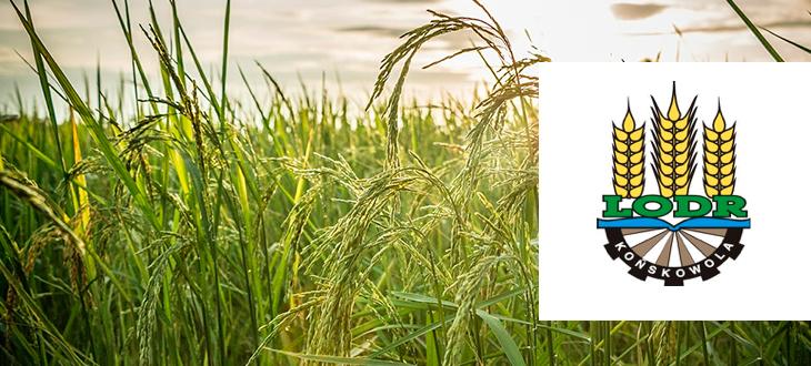 Komunikat Powiatowego Zespołu Doradztwa Rolniczego w Kraśniku w sprawie wniosków o dopłaty obszarowe EWniosekPlus