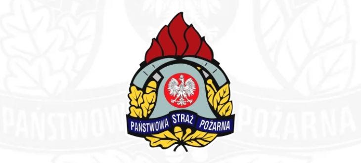 Logo na białym tle państwowa straż pożarna