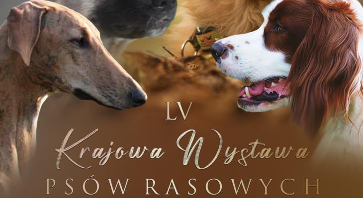 LV Krajowa Wystawa PSÓW RASOWYCH oddziału Lublin