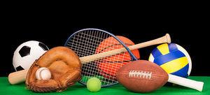Ogłoszenie otwartego konkursu ofert na realizację zadań publicznych z zakresu kultury fizycznej, w tym sportu w 2019 roku na terenie gminy Wojciechów.