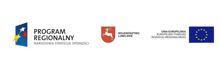 Budowa drogi gminnej obsługującej Port Lotniczy Lublin S.A. w miejscowości Świdnik Duży