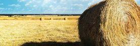 Zamykanie obiegu biogenów w gospodarstwie rolnym