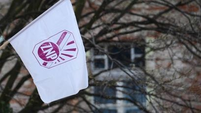 Flaga ZNP
