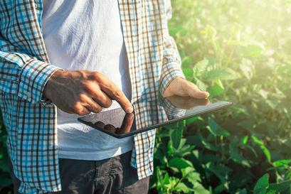 Rolnik w polu z tabletem w dłoni