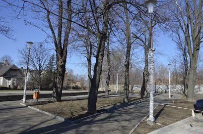 Skwer przy ul. Krasińskiego w Żarowie