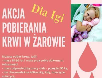 Zbiórka krwi dla 3-letniej Igi z Żarowa