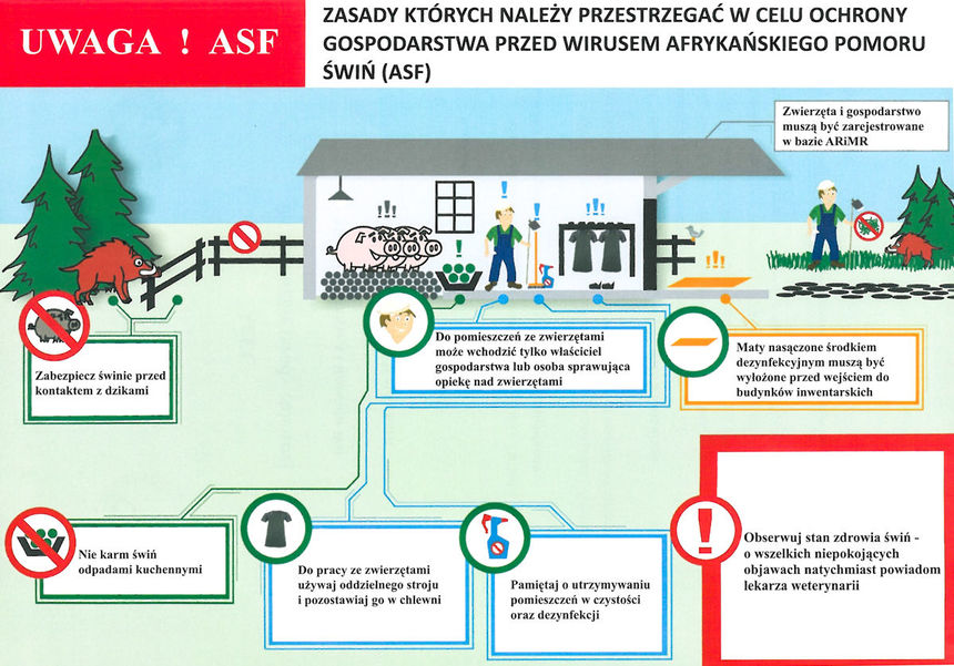 ASF Plakat