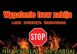 Plakat - Nie wypalaj traw