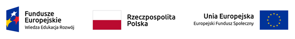 Logo dofinansowanie
