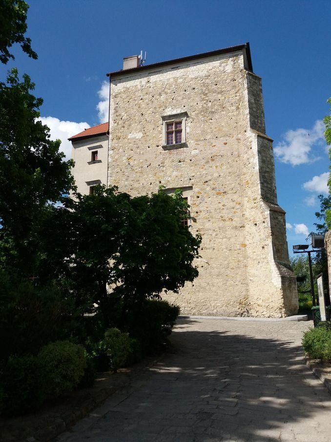 Na zdjęciu znajduje się Wieża Ariańska w Wojciechowie