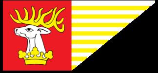 Flaga Powiatu Lubelskiego