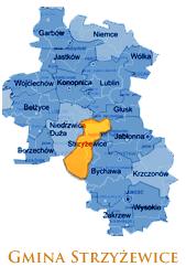 Grafika przedstawia Gmine Strzyżewice na mapie