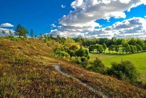Rezerwat roślinności stepowej Podzamcze w Bychawie fot Marek Matysek