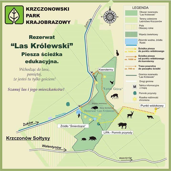 Grafika przedstawia mape pieszej ścieżki edukacyjnej Rezerwatu Las Królewski