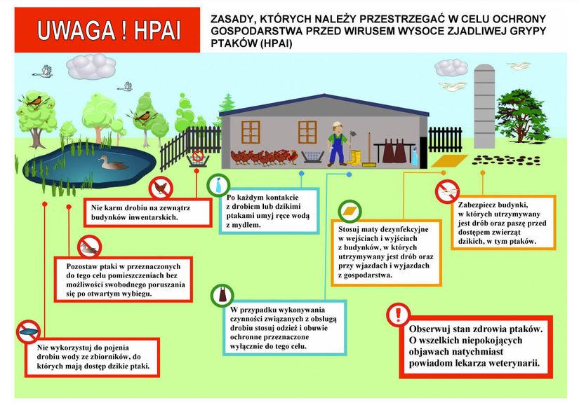 Plakat w formie graficznej z informacjami poniżej