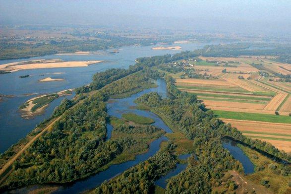 Rzeka, drzewa i pola - widok z góry