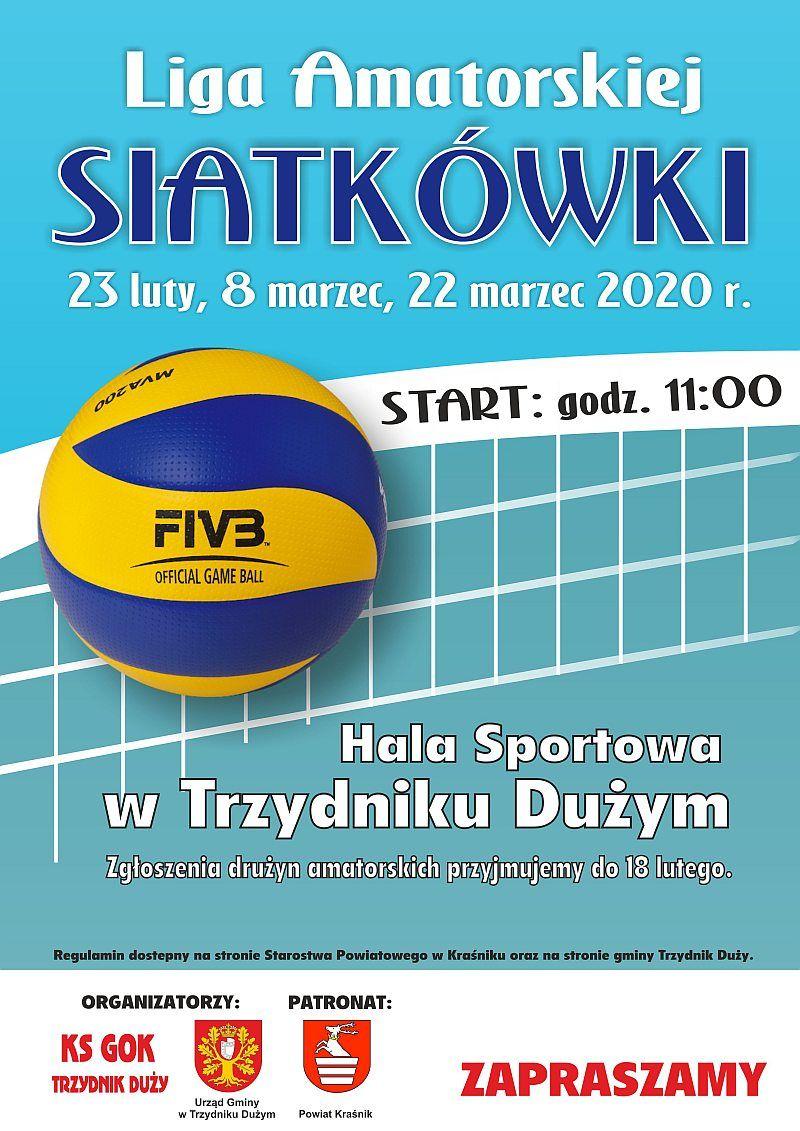 Plakat - Amatorska Liga Siatkówki